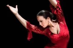 flavialuchenti-flamenco_04